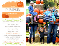 Fall Photos & Pumpkin Minis!